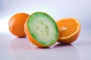 GMO: nauka przegrywa z zyskiem