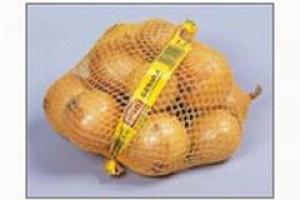 Więcej cebuli na Opolszczyźnie