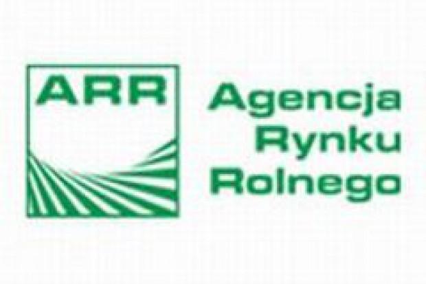 Premier odwołał prezesa ARR