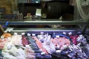 GUS: Wzrost połowów na Bałtyku i łowiskach dalekomorskich