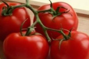 UE: Ceny pomidorów do przetwórstwa wzrosną nawet o 50 proc.