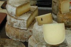Silna złotówka przyczyną kłopotów branży mleczarskiej