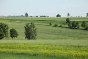 Rolnicy wydali w 2007 r. na pasze i nawozy prawie 10 mld zł