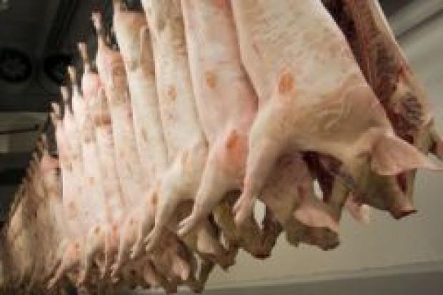 Wzrost produkcji wieprzowiny w USA i UE nie zrównoważy spadku w Chinach
