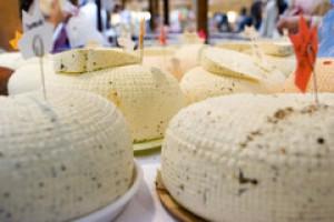 Pierwszy chroniony czeski ser