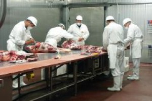 Makton przejmuje Zakłady Mięsne Paruzel