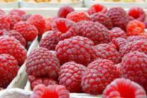 Można składać wnioski o dopłaty do malin i truskawek