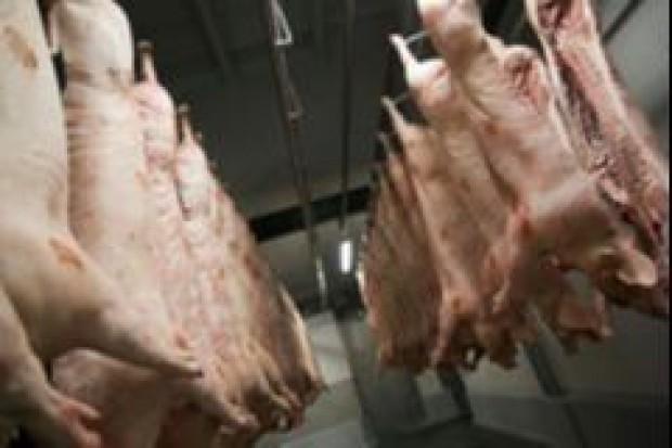 13 proc. spadek produkcji polskiej wieprzowiny