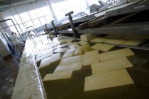 North Coast zainwestuje ok. 20 mln zł w mleczarnię