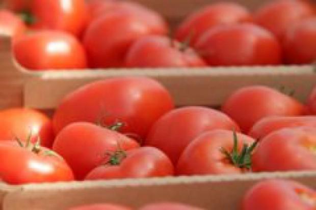 Turcja pomidorowym potentatem eksportowym