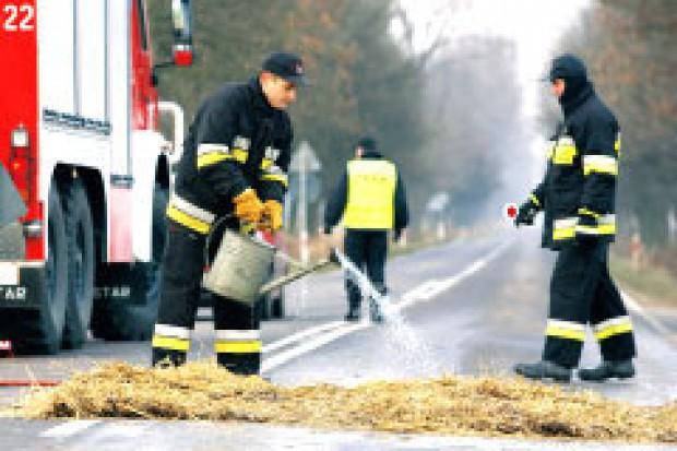 Minister rolnictwa uchylił zakazy związane z ptasią grypą