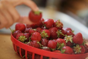 Rynek owoców: Maliny i truskawki
