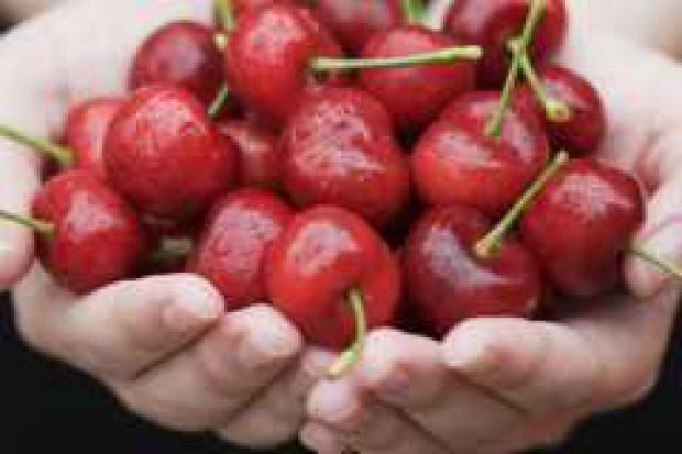 Zbiory wiśni w Unii Europejskiej będą niższe od ubiegłorocznych