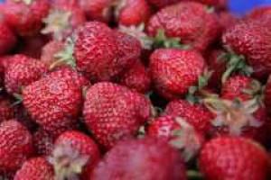 Grant na promocję polskich warzyw i owoców