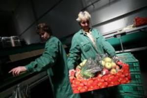 Rolnicy i handlowcy pracują najwięcej