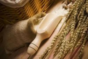 Eksperci: Europa i Japonia powinny uprawiać GMO