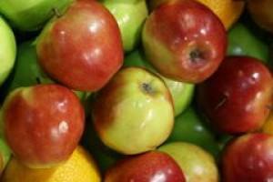 Ceny jabłek muszą spaść, by produkcja koncentratu się opłacała