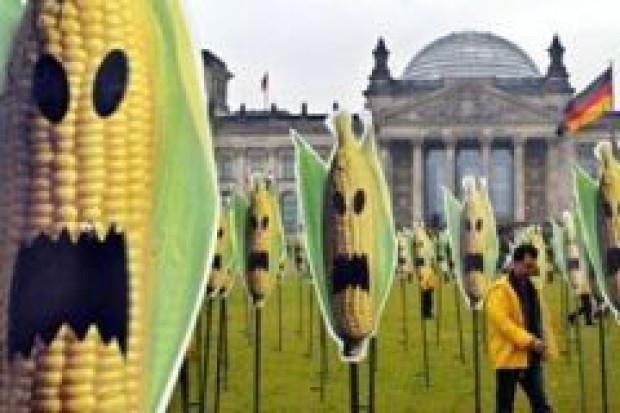 Grupa Wyszehradzka przeciw GMO