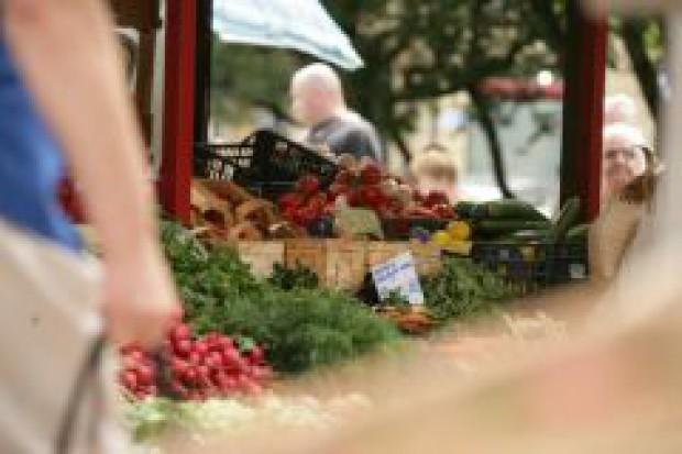 Maleje krajowa dynamika sprzedaży żywności