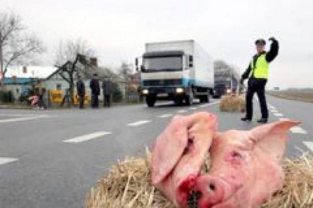 Będą blokady dróg! Rolnicy żądają wprowadzenia ceł na import zbóż