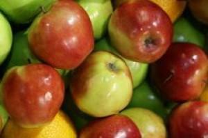 """Parlament Europejski: 500 mln euro dla programu """"owoce w szkole"""""""