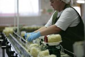 Producenci żywności najmniej stracą na kryzysie finansowym