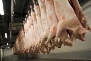 Spadają ceny zbytu mięsa w zakładach