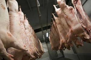 USA: rośnie produkcja mięsa czerwonego
