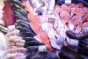 Chińska trucizna także w karmie dla ryb