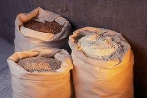 Rośnie eksport zbóż z krajów Unii Europejskiej