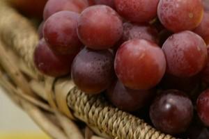 Europejskie winogorna skażone środkami chemicznymi