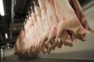 Uwaga na irlandzką wieprzowinę, sprawę monitoruje już KE