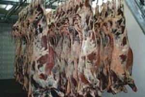 Nie tylko irlandzka wieprzowina, ale także wołowina skażona dioksynami