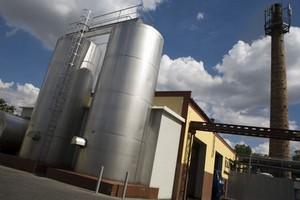 Przedstawiciel Bakomy: Kwoty mlecznej w ogóle nie powinno być