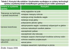 Zdjęcie numer 4 - galeria: Stan upraw roślin genetycznie zmodyfikowanych na świecie i w Polsce