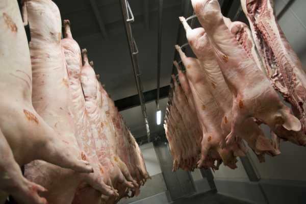 Zakłady Mięsne w Końskowoli splajtowały