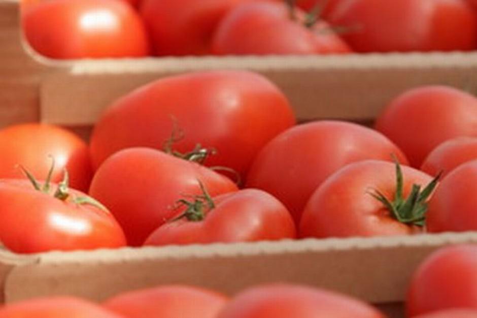 Chińskie pomidory przemysłowe zaleją światowy rynek?