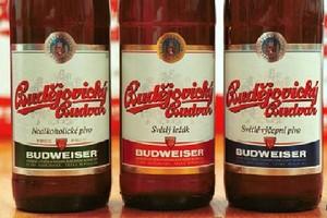 Budejovicky Budvar zwiększa sprzedaż piwa