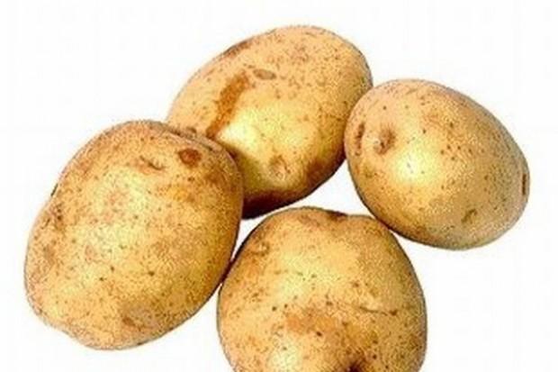 SIE: Zupełny brak monitoringu żywności GMO, Polacy nie wiedzą co jedzą!