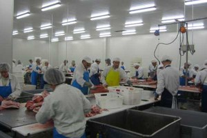 """Zakłady mięsne """"Kujawy"""" sprzedane, syndyk czeka na pieniądze"""