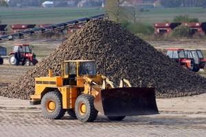 O 32 proc. zmalała w Polsce produkcja cukru