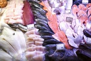 Sejm zadecydował: Będzie miliard euro dla rybaków