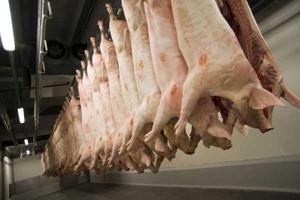Polskie firmy eksportujące mięso na Ukrainę rezygnują z kolejnych dostaw