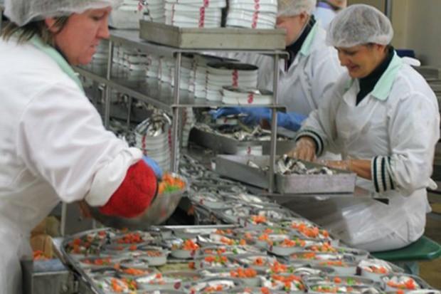 Białoruś nie będzie importować przetworzonych ryb i owoców morza, także z Polski
