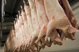 Analitycy: Trudne do przewidzenia skutki świńskiej grypy dla przemysłu mięsnego