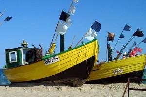 Rybacy | portalspozywczy pl