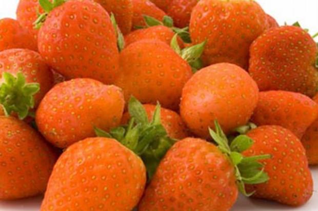 Urodzaj truskawek, ceny będą spadać