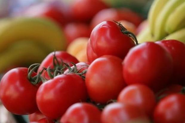 Spada wartość eksportu polskich pomidorów