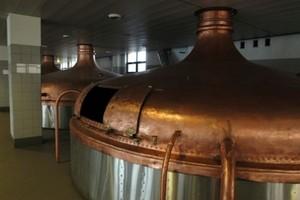 Piwo Grodziskie wróci na rynek, inwestycja pochłonie 20 mln zł
