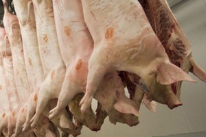 Żniwa odbiją się na cenie wieprzowiny